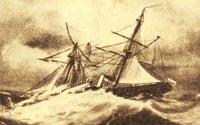 Termenul săptămânii: Beaufort şi Douglas